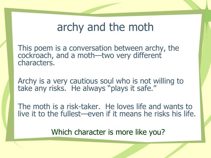 archy and the moth