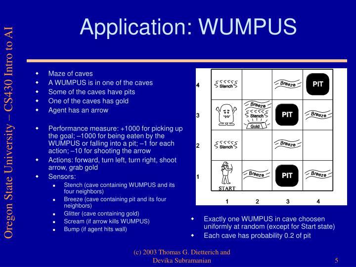 Application: WUMPUS