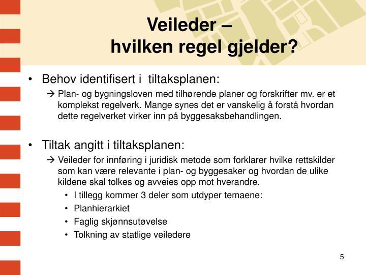 Veileder –