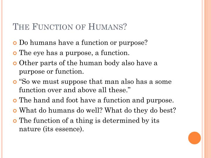 The Function of Humans?