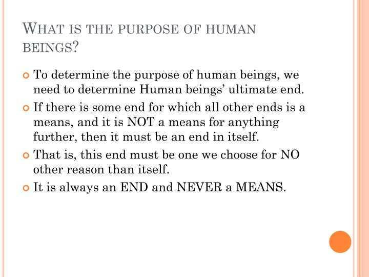 What is the purpose of human beings?