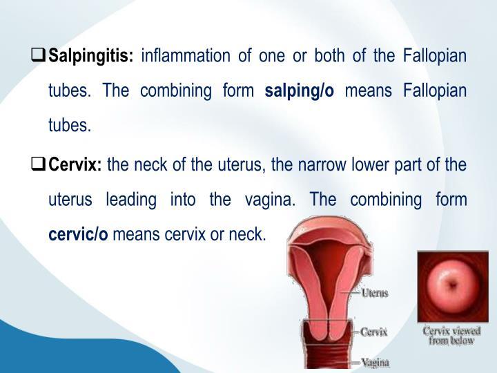 Salpingitis: