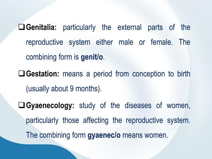 Genitalia: