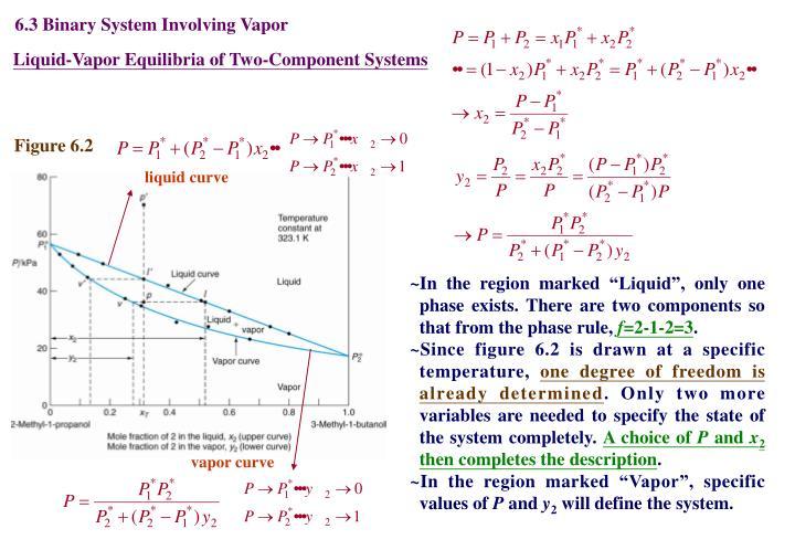 6.3 Binary System Involving Vapor