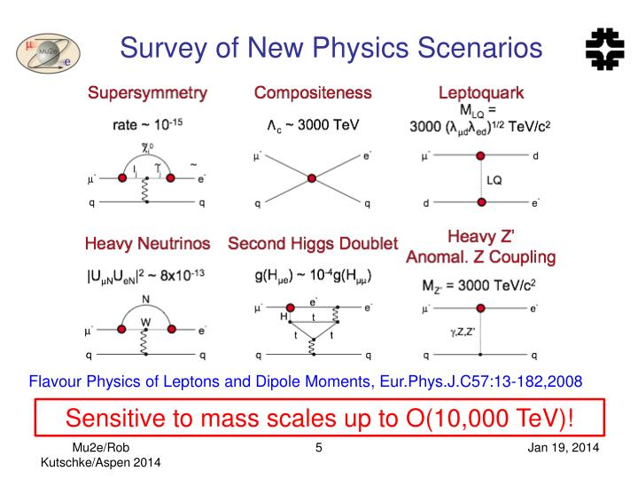Survey of New Physics Scenarios