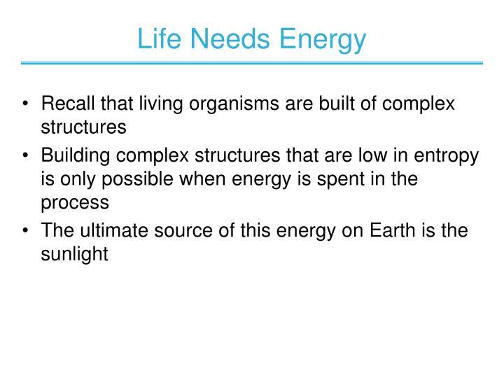 Life Needs Energy