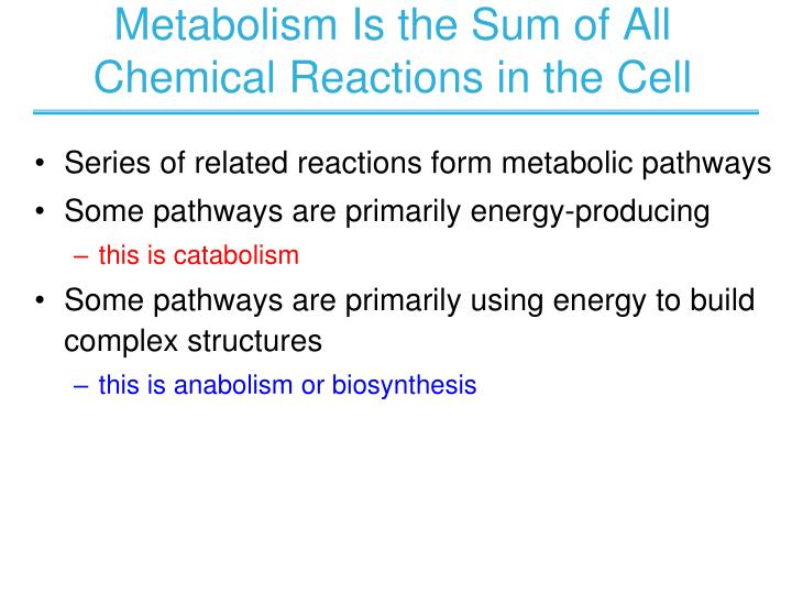 Metabolism is the sum of all chemical reactions in the cell