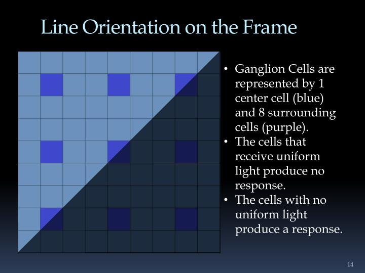 Line Orientation on the Frame