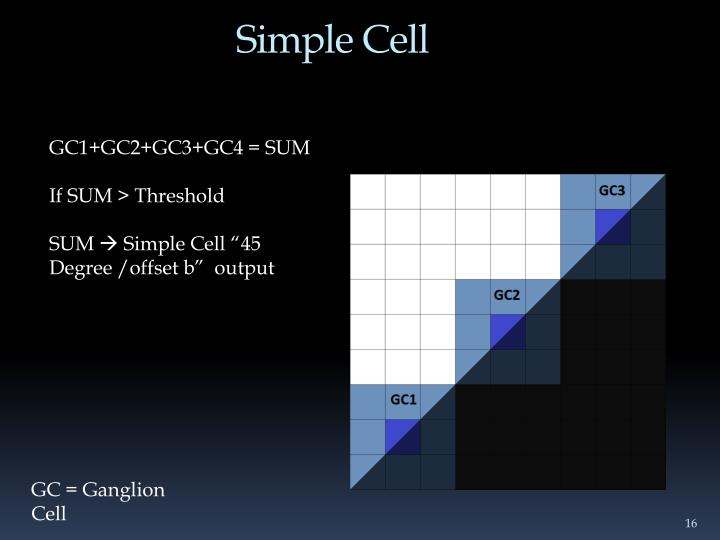 Simple Cell