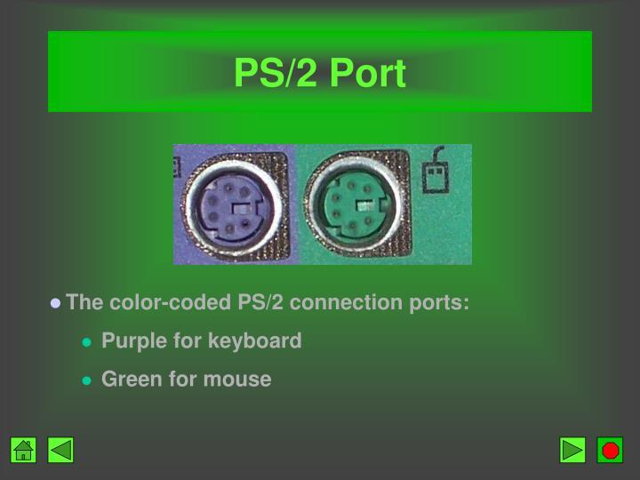 PS/2 Port