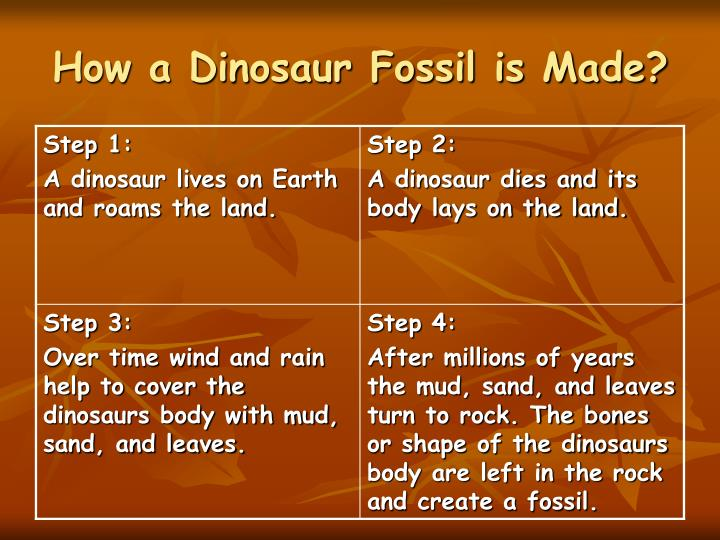 How a Dinosaur Fossil is Made?