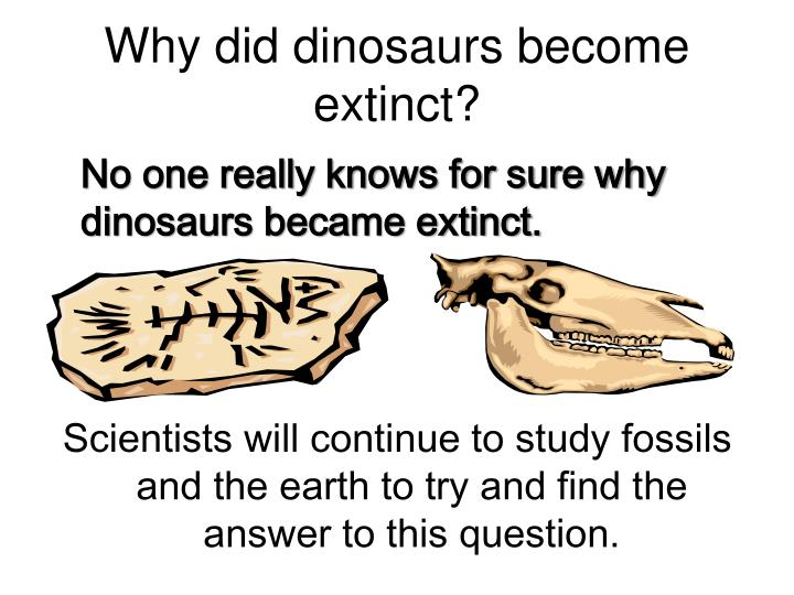 Why did dinosaurs become extinct?