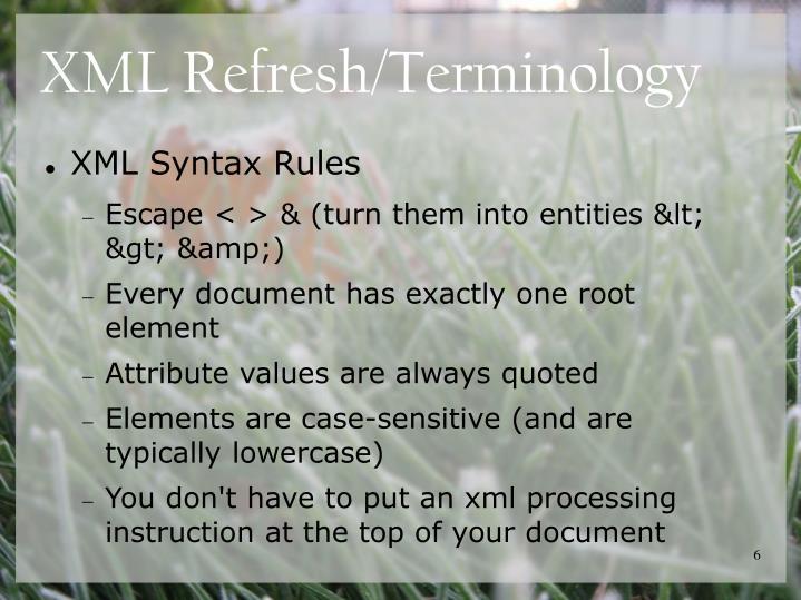 XML Refresh/Terminology