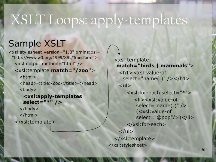 <xsl:template