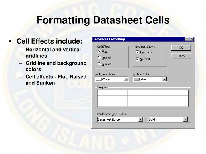 Formatting Datasheet Cells