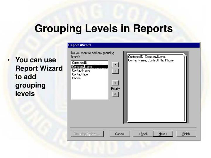Grouping Levels in Reports