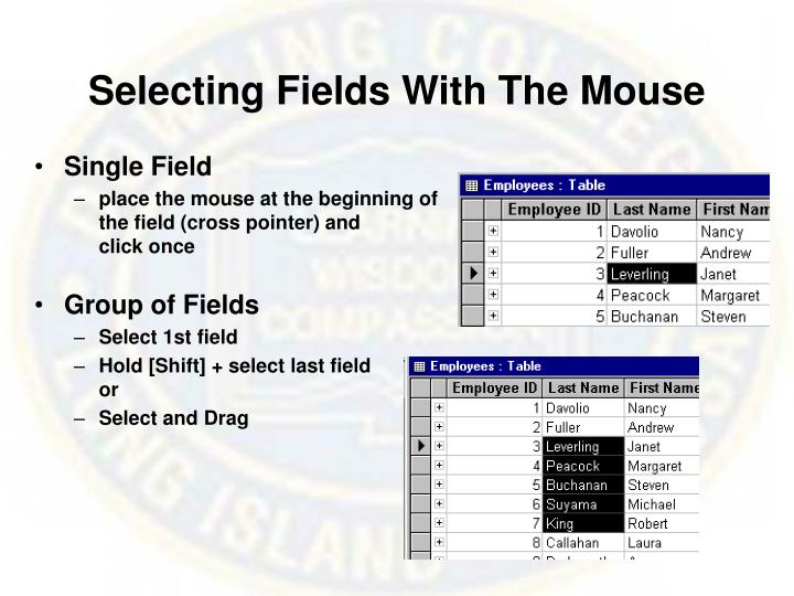 Selecting Fields With The Mouse