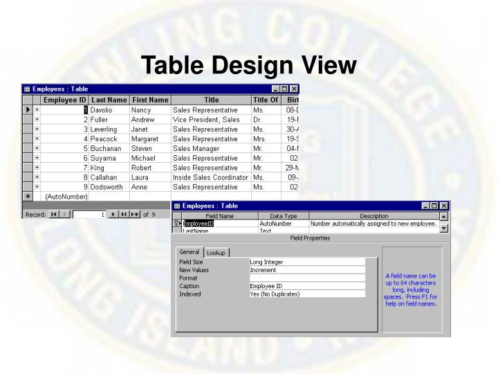 Table Design View