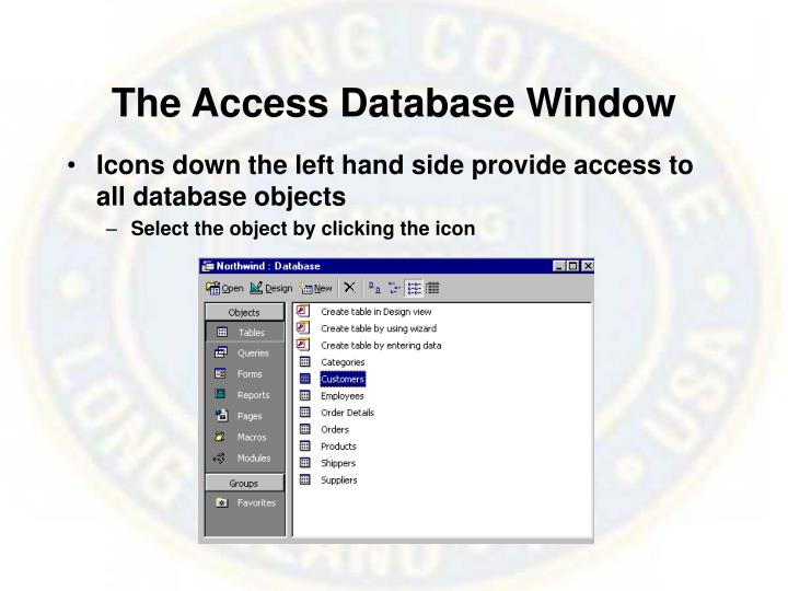 The Access Database Window