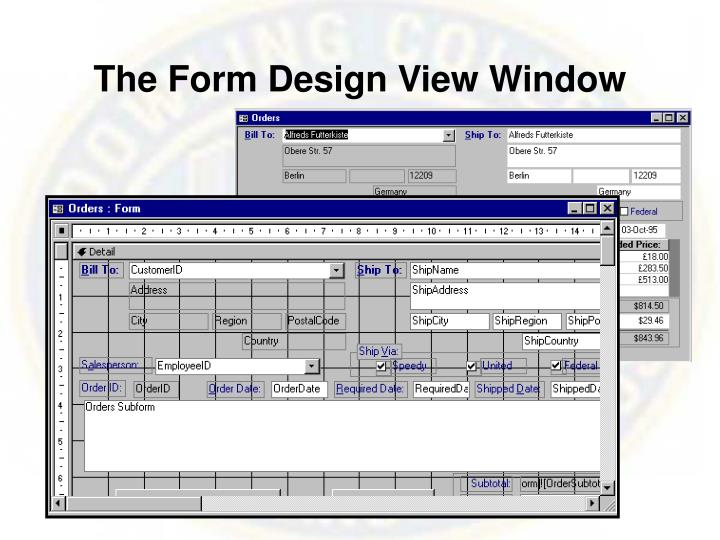The Form Design View Window