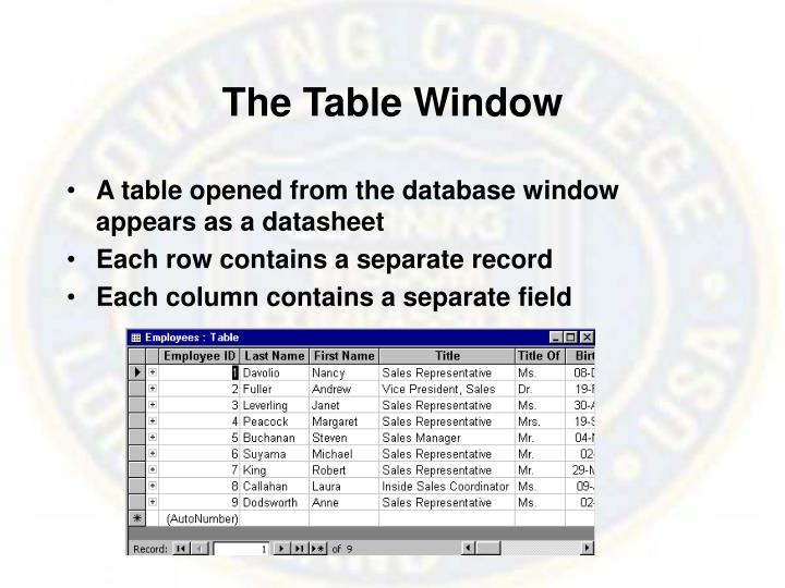 The Table Window