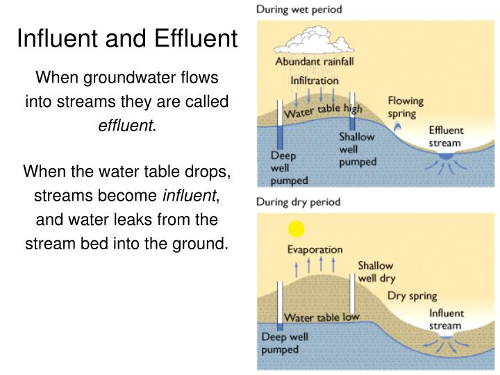Influent and Effluent