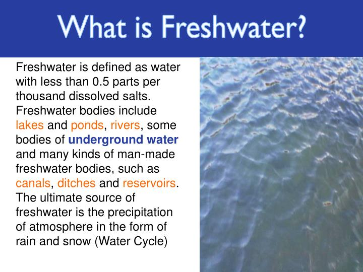 What is Freshwater?