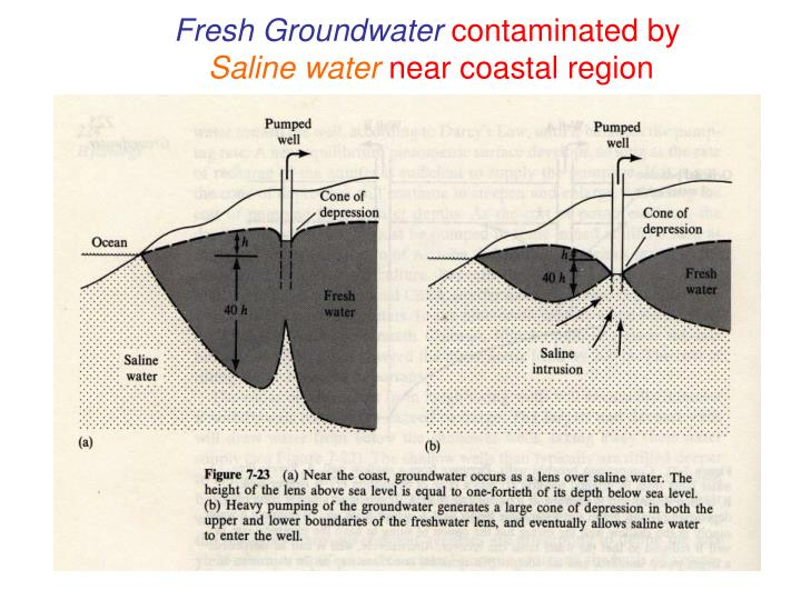 Fresh Groundwater
