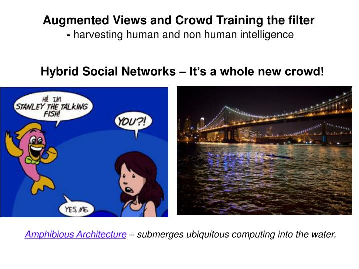 Augmented Views and Crowd Training the filter