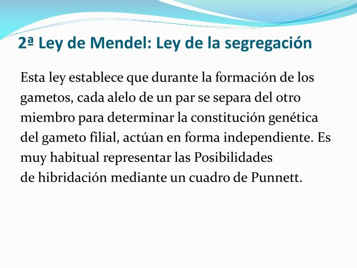 2ª Ley de Mendel: Ley de la segregación