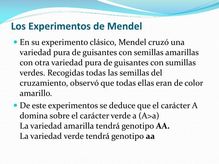 Los Experimentos de Mendel