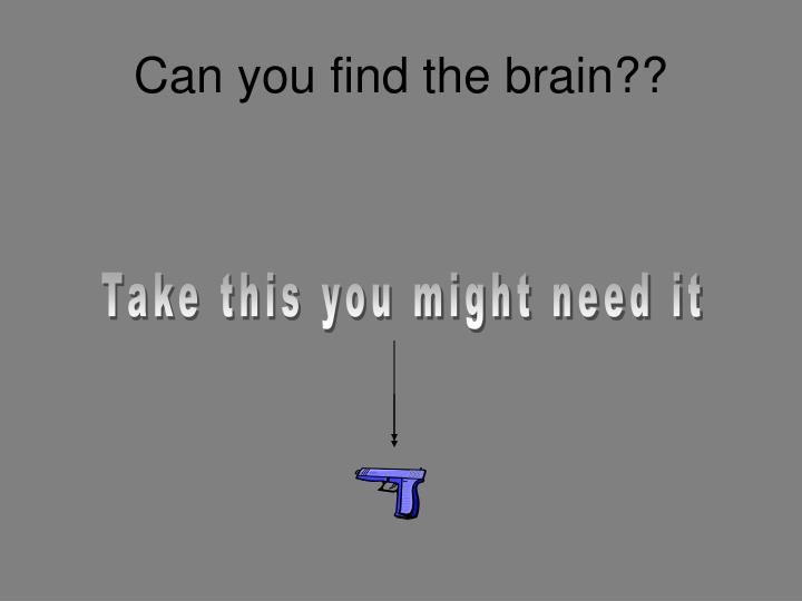 Can you find the brain??
