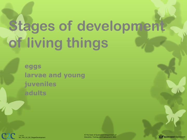 chapter 9 life span development A topical approach to life-span development, 6th edition  8471 ppt presentation summary : a topical approach to life-span development, 7th editionjohn w santrock  chapter 9 - language development  to life-span development, 6th edition.