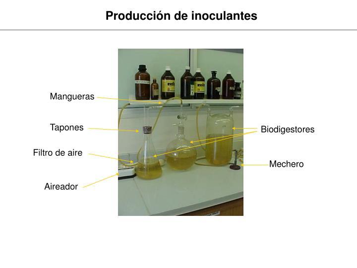 Producción de inoculantes