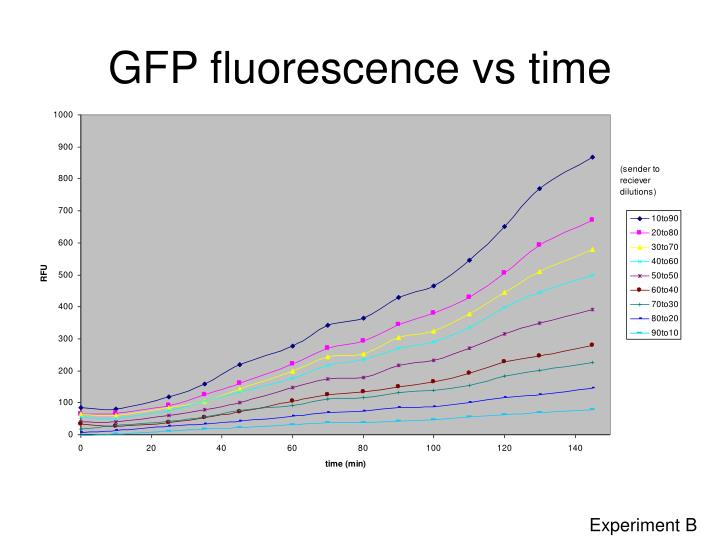 GFP fluorescence vs time