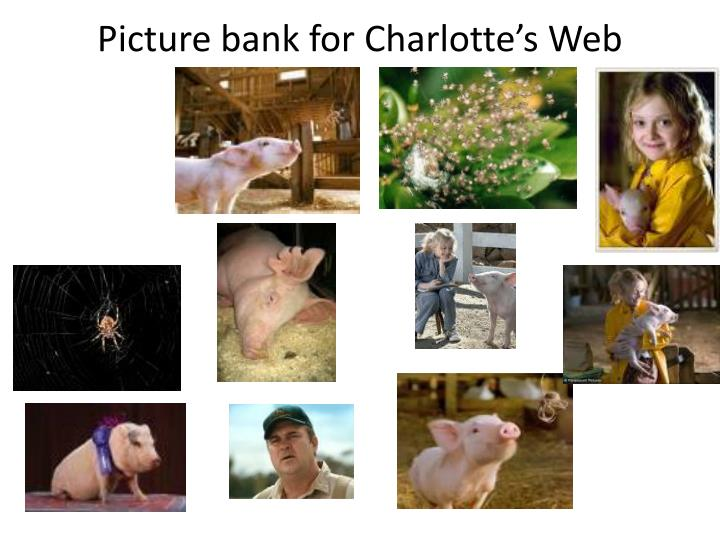 Picture bank for Charlotte's Web