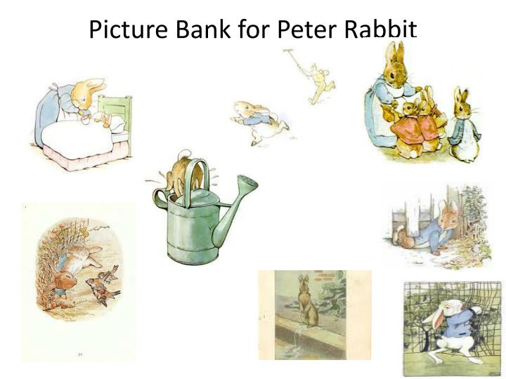 Picture Bank for Peter Rabbit