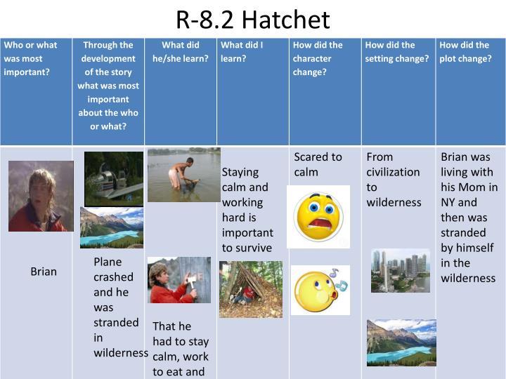 R-8.2 Hatchet