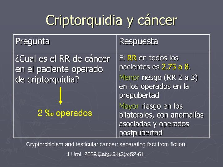 Criptorquidia y cáncer