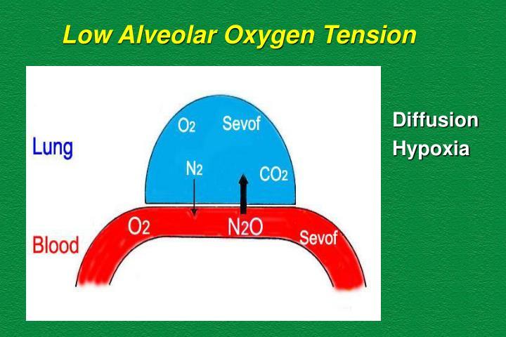 Low Alveolar Oxygen Tension