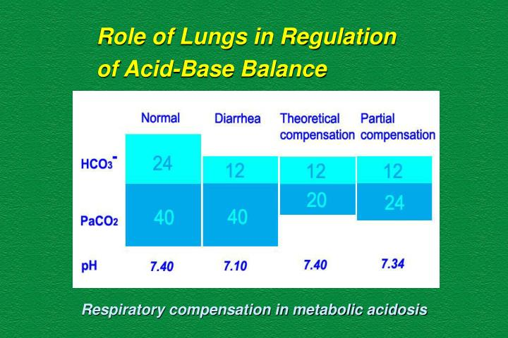 Role of Lungs in Regulation