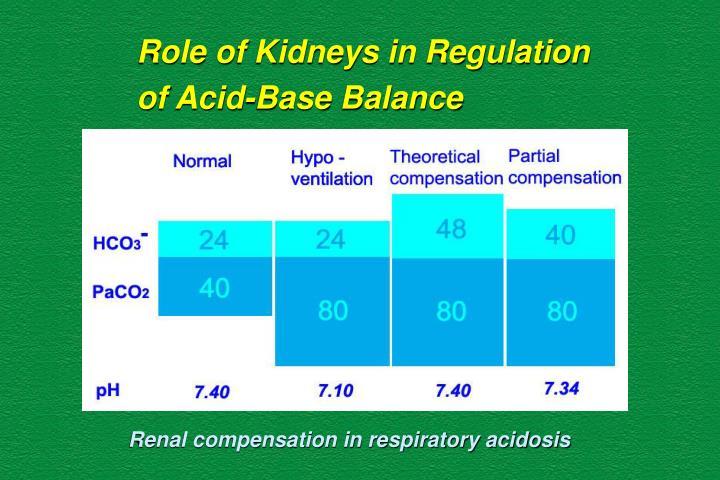 Role of Kidneys in Regulation