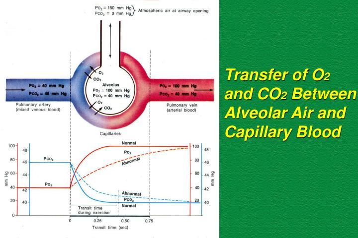 Transfer of O