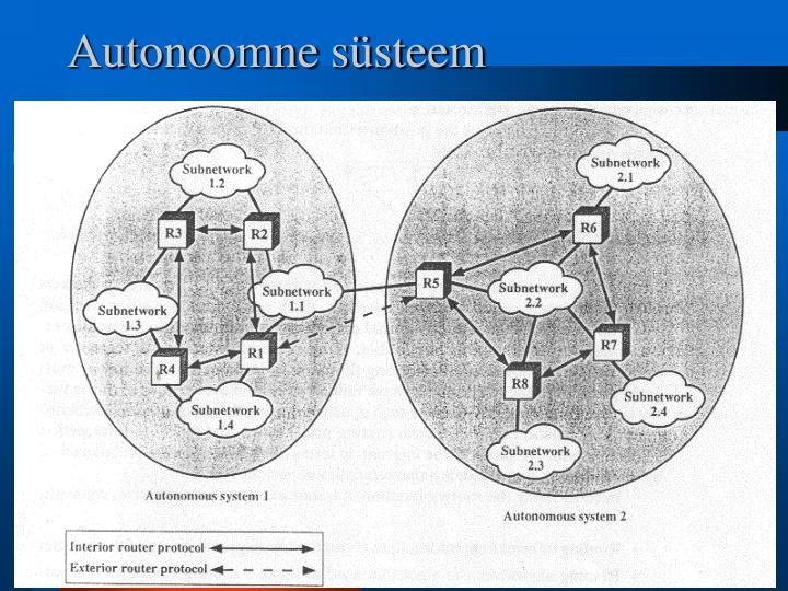 Autonoomne süsteem
