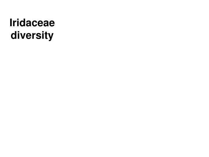 Iridaceae diversity