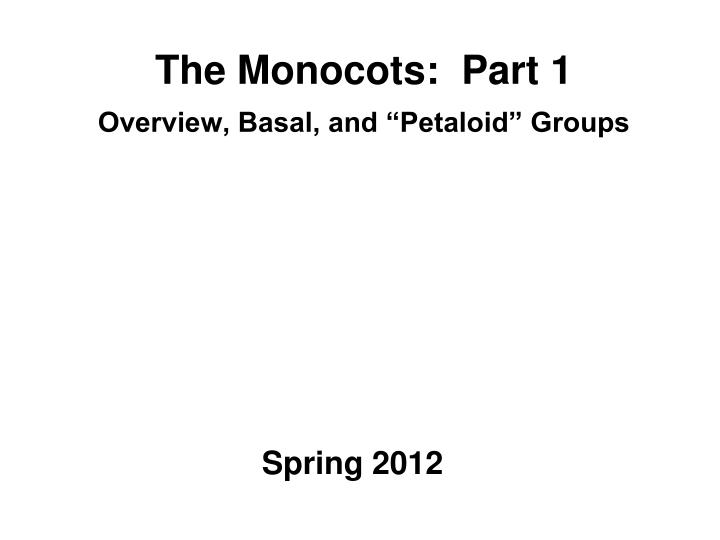 The monocots part 1 overview basal and petaloid groups