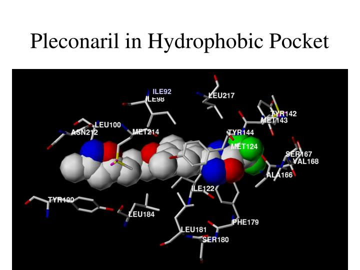 Pleconaril in Hydrophobic Pocket