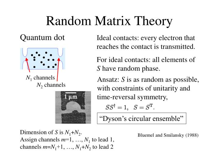 Random Matrix Theory