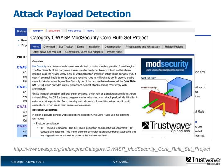 Attack Payload Detection