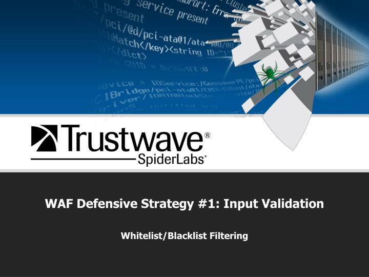 WAF Defensive Strategy #1: Input Validation
